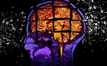 MIT-Alzheimers-Forecasting-01.jpg