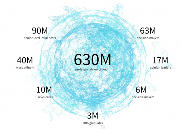 LinkedIn audience broken down by high-level title