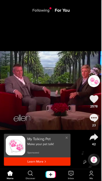 My Talking Pet TikTok ad