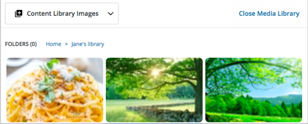 Hootsuite content library images
