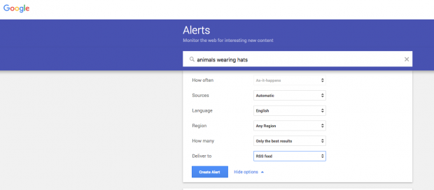 "Google alerts for ""animals wearing hats"""