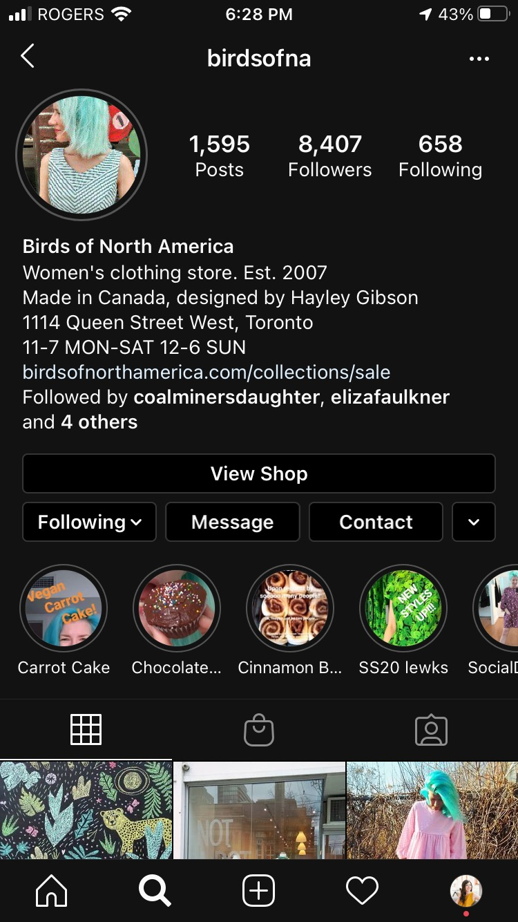 Birds of North American Instagram Business Profile page