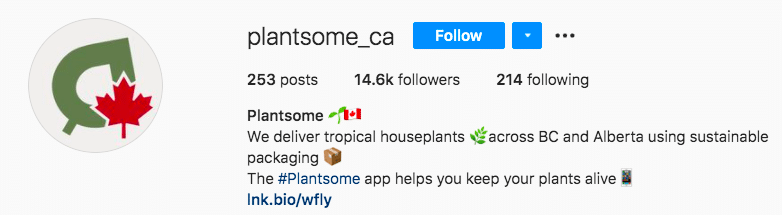 Plantsome tropical houseplants delivery business