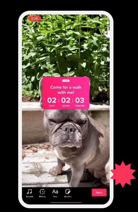 Live stream countdown sticker on TikTok