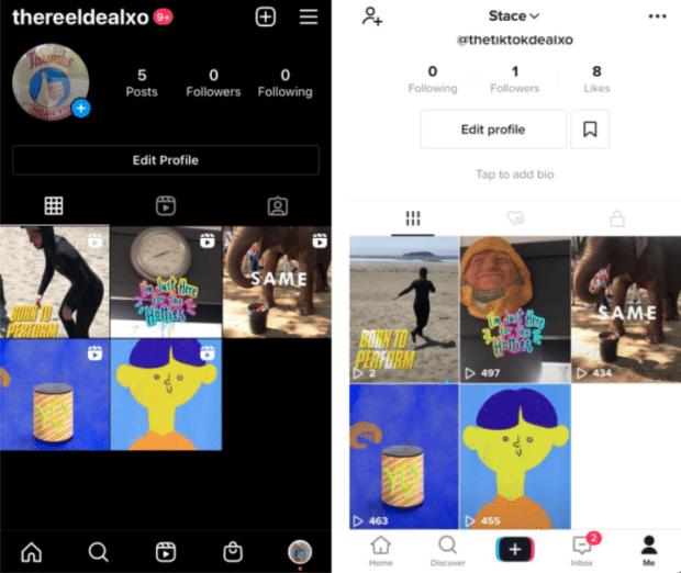 TikTok vs Instagram Reels identical short videos